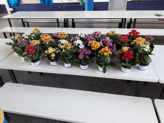 CMEI homenageia professores pelo seu dia