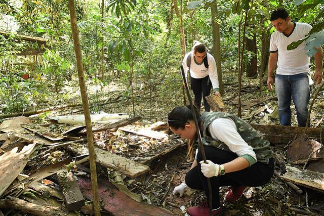 Vigilância faz busca ativa de escorpiões nos bosques