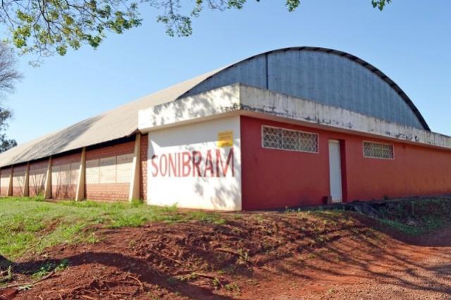 Campo Mourão sedia Paranaense Intercolonial de Tênis de Mesa
