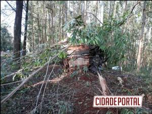 Acidente automobilístico na PR-574 em Cafelândia deixa uma pessoa morta