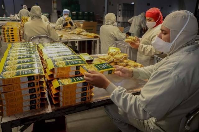 Alimentos processados em empresas paranaenses são líderes nacionais e regionais de vendas