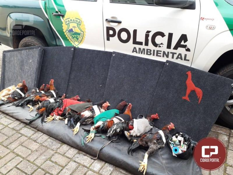 Polícia Ambiental prende quatro pessoas pela prática de Rinha de Galo no município de Pérola/PR