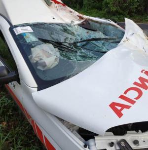 Ambulância da Prefeitura de Xambrê colide em cavalo na PR-489