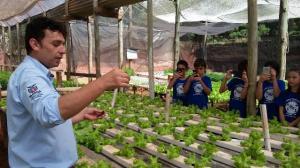 Alunos do Projeto Amigos da Natureza conhecem cultivo hidropônico em Araruna.