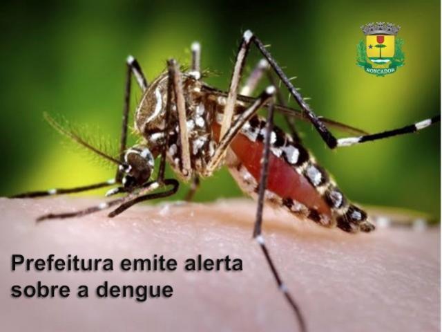 Prefeitura de Roncador emite alerta sobre aumento dos focos do mosquito da dengue