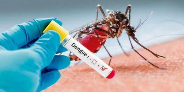 Campo Mourão está com 508 casos positivos de dengue