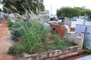 Mais de 80 túmulos em estado de abandono de Campo Mourão serão desapropriados