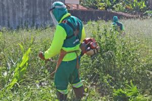 Terrenos sujos lideram reclamações na Ouvidoria municipal de Campo Mourão