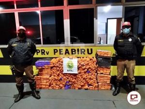 PRE de Peabiru prende jovem e apreende veículo carregado com mais de 250 kg de maconha