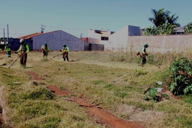 Proprietários de imóveis de 14 bairros são notificados a limparem lotes em Campo Mourão