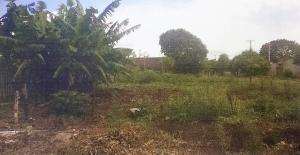 Prefeitura de Campo Mourão vai leiloar 19 terrenos