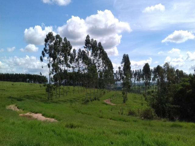 Sistemas De Integração para Agropecuária Sustentável SIPAS