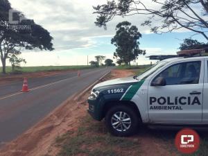 Polícia Ambiental atua pescador em Alto Paraíso com peixes nativos fora do tamanho permitido