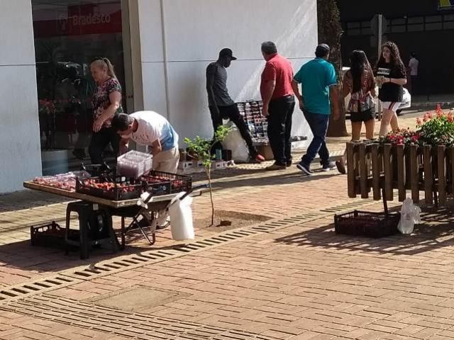Vendedores ambulantes em desacordo com a lei são notificados e podem perder mercadorias