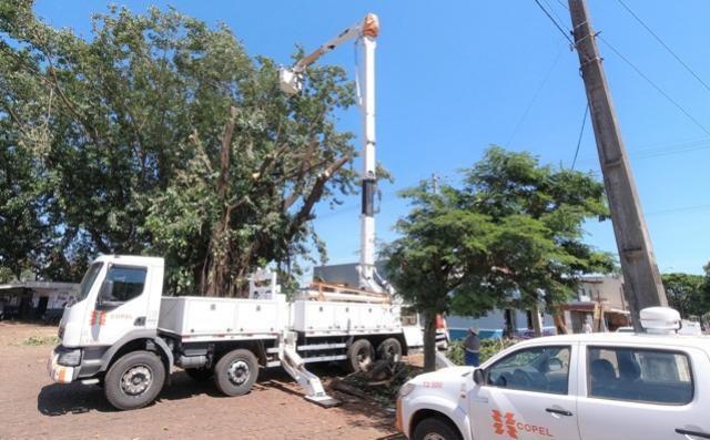Defesa Civil e Copel trabalham em conjunto na eliminação de árvore que trazia riscos a moradores