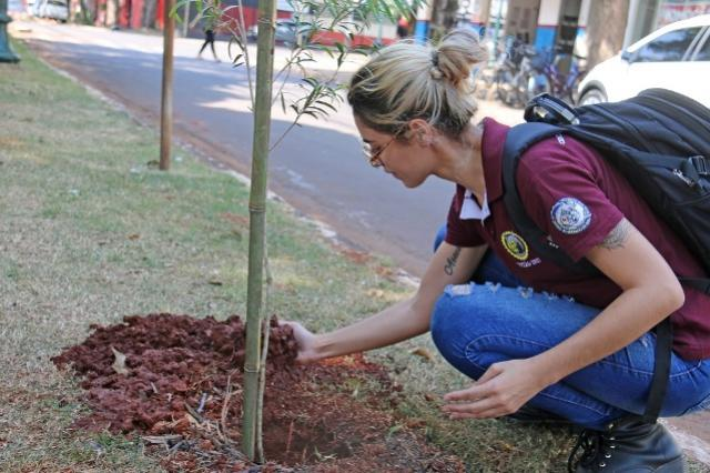 Plantio em parque e troca demudasvão marcar Semana da Árvore na cidade de Campo Mourão