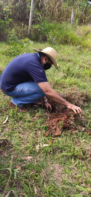 Município de Iretama comemora Dia da Árvore
