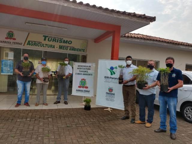 Dia da Árvore é comemorado com plantio e doação de mudas em Barbosa Ferraz
