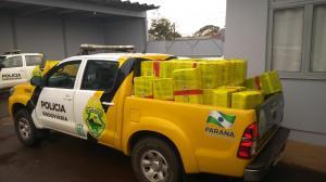 PRE apreende 2,2 toneladas de maconha; maior apreensão do ano na região