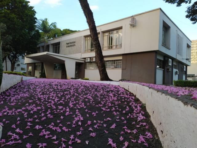 Município de Campo Mourão abre vagas para estagiários em 18 áreas