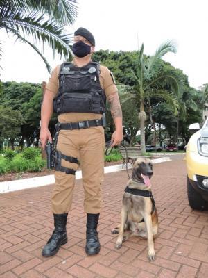 """Polícia Militar lança a """"Operação Vida"""" em Campo Mourão"""