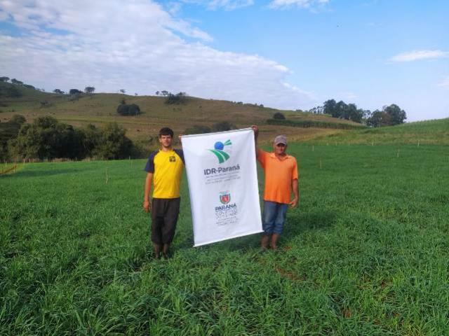 Forrageira de Inverno desenvolvida pelo IDR-Paraná gera mais renda aos produtores de leite de Iretama