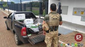 PF e BPFron apreendem carga de agrotóxicos avaliada em R$ 280 mil na cidade de Terra Roxa