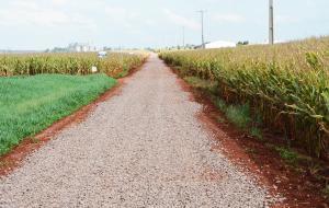 Estradas na região do Nice recebem melhorias com solo brita