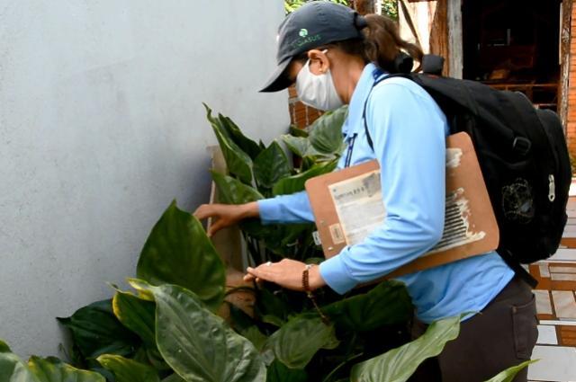 Dengue: Assis Chateaubriand completa três semanas sem novos casos