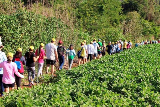 IDR-Paraná prepara retorno das Caminhadas na Natureza