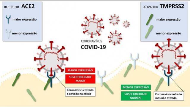 Startup desenvolve teste que identifica a vulnerabilidade genética de pessoas ao novo Covid-19