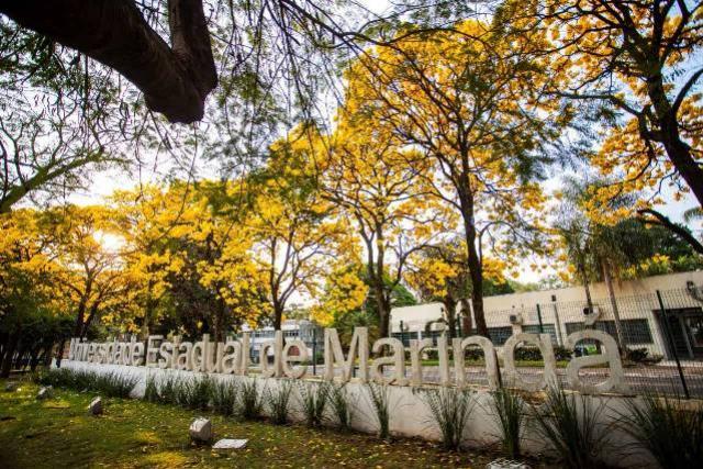 Inscrições para professores temporários na UEM termina nesta quinta-feira, 28