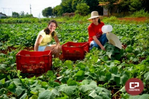 Cresce o número de propriedades certificadas no Paraná para a produção de alimentos orgânicos