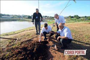 Lago Tucuruvi vai ganhar bosque de ipês em Umuarama