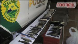 Polícia Ambiental prende dois pescadores amadores com 55 peixes abaixo da medida permitida em São Jorge do Patrocínio