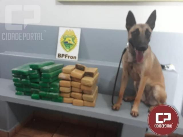 BPFron realiza a apreensão de drogas na rodoviária de Marechal Cândido Rondon