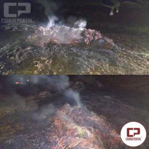 Polícia Ambiental de Umuarama notifica uma pessoa por crime ambiental