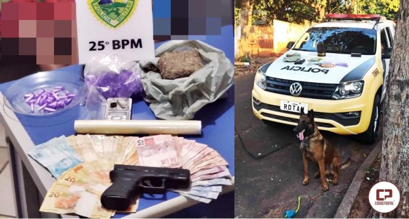 Cão farejador da Polícia Militar de Umuarama localiza drogas em residência no Parque Dom Pedro II