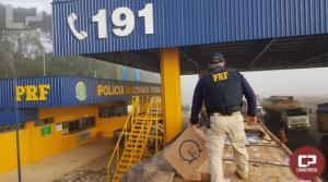 Apreensões de cigarro feitas pela PRF dobram em 2019 e superam recorde histórico no Paraná