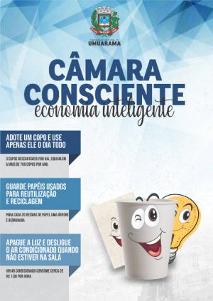 Câmara de Umuarama vai reduzir consumo  de energia, uso de suprimentos e telefonia