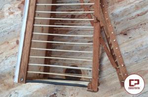Uma pessoa foi presa em Lovat por posse de entorpecente e animais silvestres mantidos em cativeiro