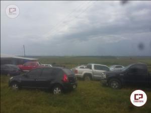 Polícia Ambiental estoura rinha de galos em Cruzeiro do Oeste, 29 pessoas foram detidas e 72 galos apreendidos
