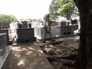 Novo Liraa deixa um alerta para proliferação do mosquito da dengue em Umuarama