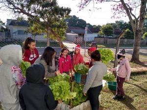 Alunos de Santa Eliza aprendem a fazer compostagem e criam horta