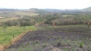 Balanço Operação Nacional Mata Atlântica em Pé confirma desmatamento de 121 hectares de florestas