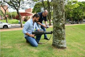 Resistógrafo alemão agiliza análise sobre saúde da arborização urbana em Umuarama