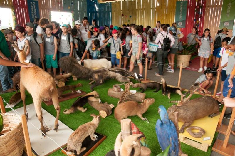 Mais de 3 mil alunos da rede municipal visitaram a Expo-Umuarama 2018