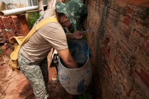 Infestação do mosquito da dengue cai para 0,5% em Umuarama