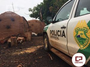 Polícia Ambiental de Umuarama fecha atividade ilegal de carvão em Santa Isabel do Ivaí