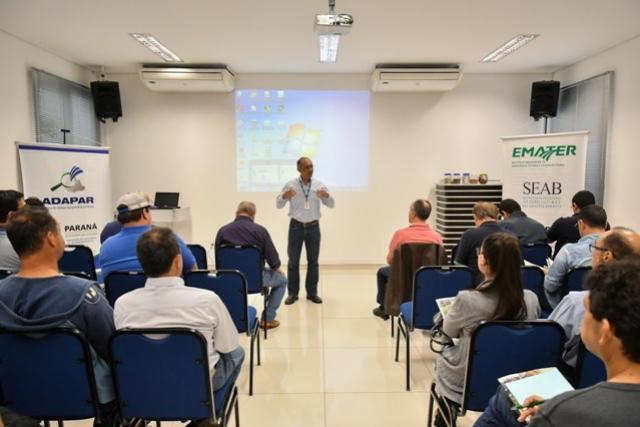 Técnicos em agropecuária da região discutem combate à formiga cortadeira
